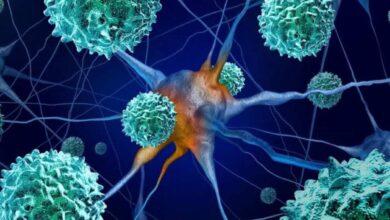 فيروس كورونا: هل يؤثر على خلايا المخ والأعصاب؟ دراسة بريطانية جديدة...