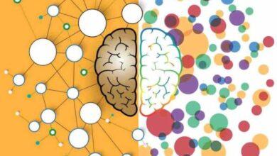 علاج اضطراب فرط الحركة وتشتت الانتباه.. 5 أنواع من الأدوية المرخصة التي تساعد على التحسن