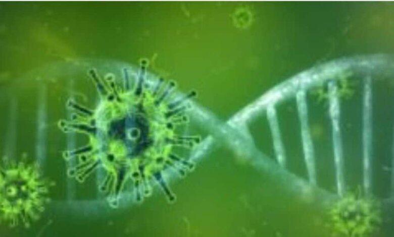 فيروس كورونا: التحور الجديد يخرج من تحت السيطرة في بريطانيا، فكيف أثر على الفيروس وعلى الوباء؟