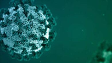 فيروس كورونا: مرضى كوفيد-19 ذوي المناعة الضعيفة قد يكونوا قادرين على نشر العدوى لأشهر..دراسة