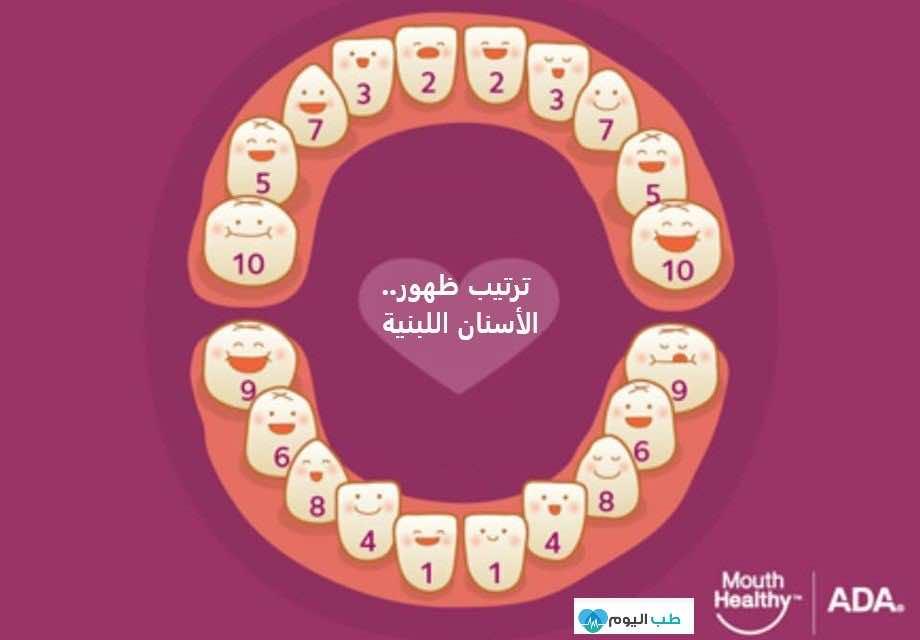 ترتيب ظهور الأسنان اللبنية في الأطفال