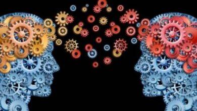 بنك المعرفة (14) | وزن المخ في الرجال أكبر مما هو في النساء.. فهل يؤثر ذلك على قدرات التفكير؟