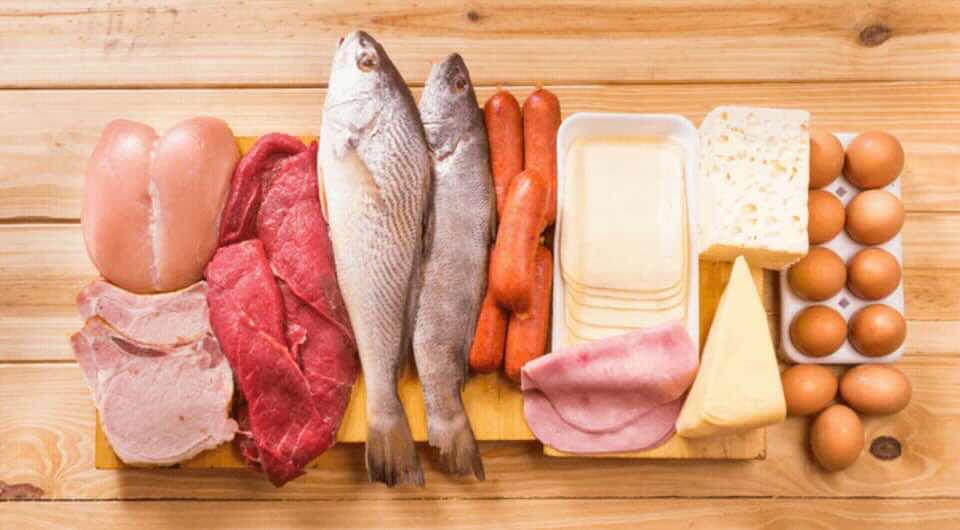 الأغذية الغنية بالبروتين