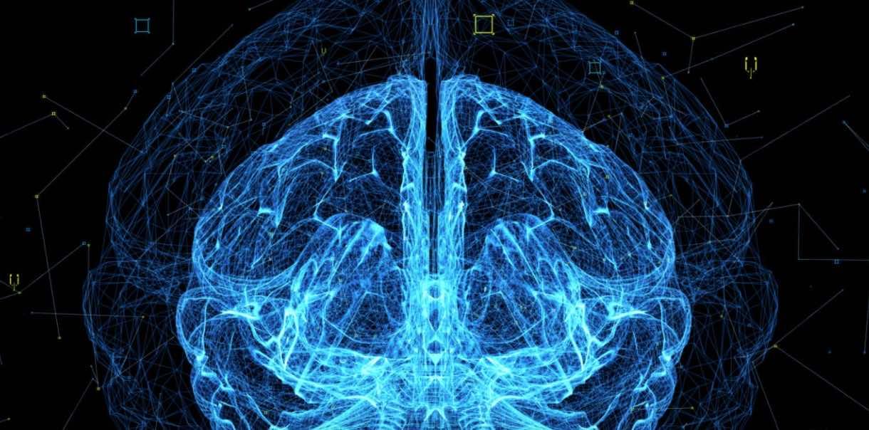 """معهد ماكس بلانك يبدأ دراسة عن """"كيفية معالجة المخ للغة الإشارة""""!- Getty"""