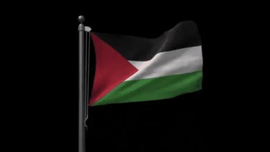 وزارة الصحة - فلسطين | العديد من أهل غزة يمتنعون عن تناول تطعيم كورونا - رويترز
