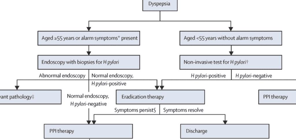 مخطط علاج عسر الهضم - indigestion - dyspepsia