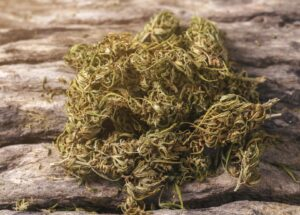 مخدرات الحشيش (ماريجوانا)