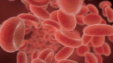 انيميا البحر المتوسط | 6 أعراض أساسية للشخص المريض و ماذا يعني حامل الثلاسيميا؟