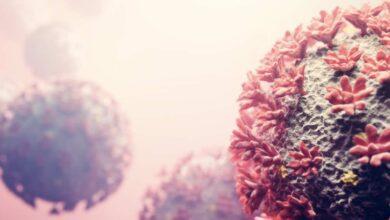بريطانيا | أخبار مطمئنة عن السلالة الهندية من فيروس كورونا المتحور - كوفيد-19