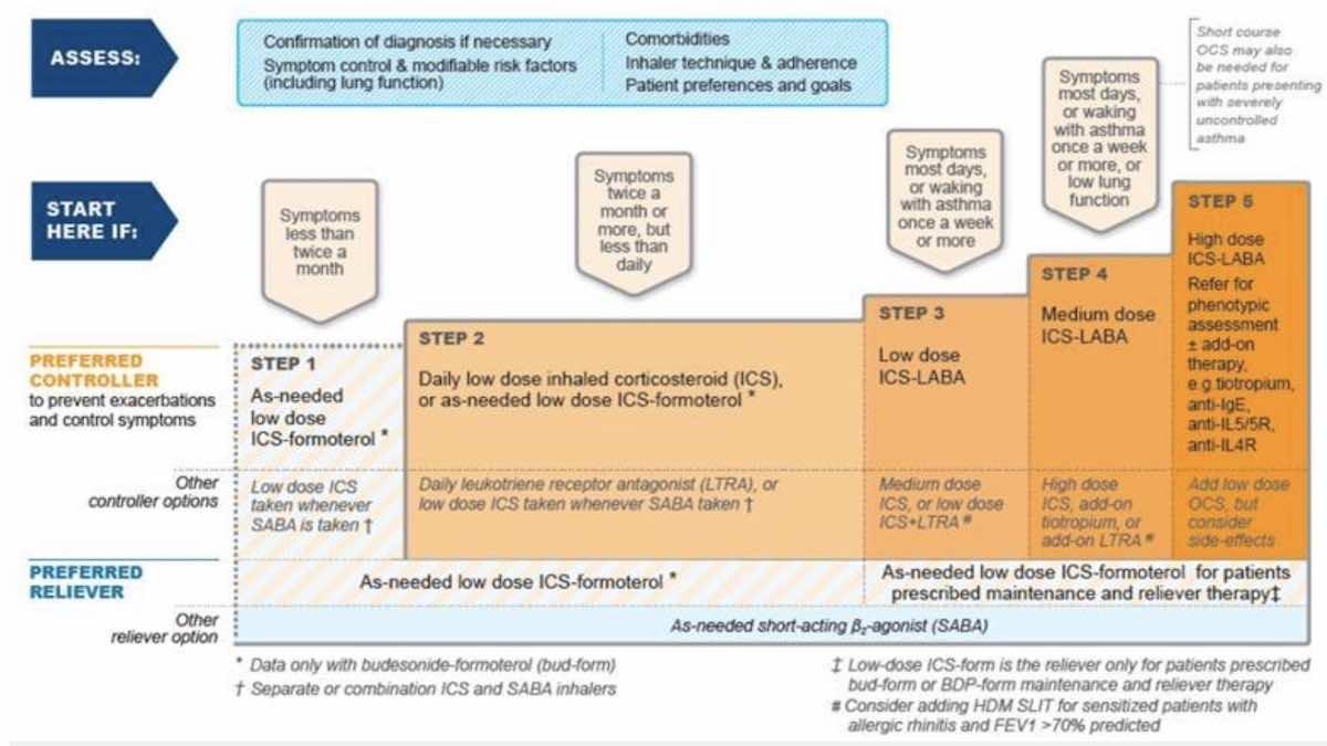 (Global Initiative for Asthma(GINA) علاج الحساسية الصدرية