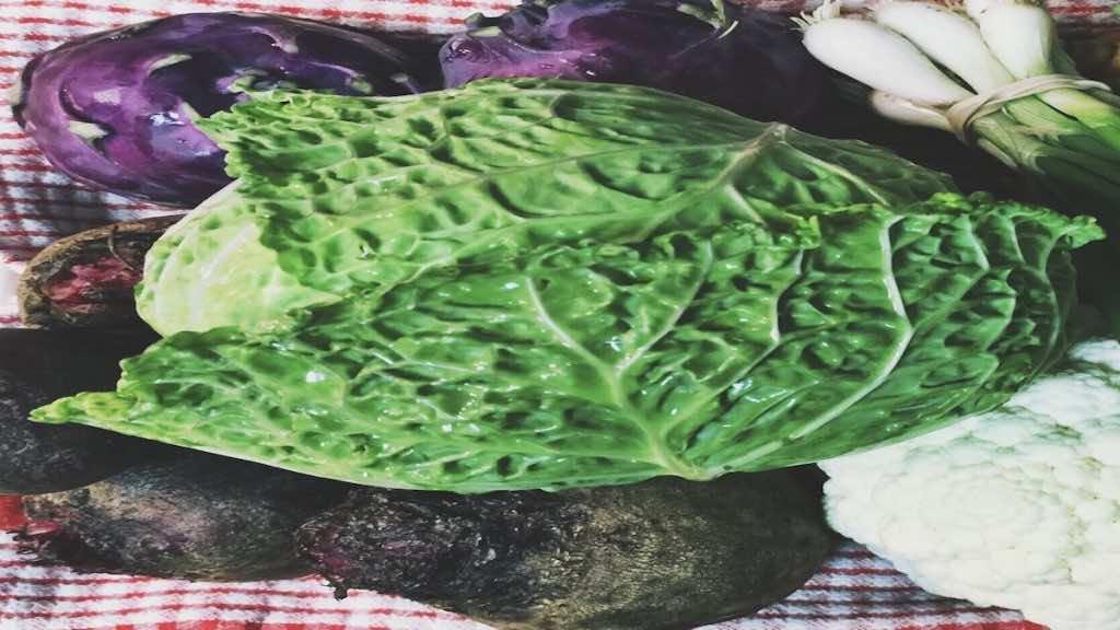 الكرنب والقرنبيط والبصل من أهم الأطعمة التي ترتبط بالانتفاخ والغازات
