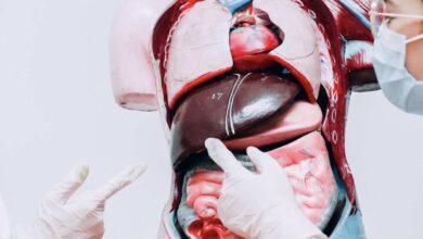 6 خيارات ل علاج تشحم الكبد - علاج الكبد الدهني